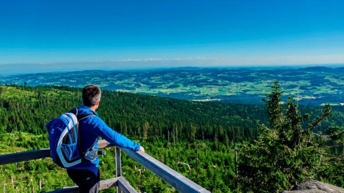 Ein traumhafter Blick über das grüne Dach Europas: Wer auf dem Goldsteig wandert, erlebt auf deutscher wie auf tschechischer Seite unvergessliche Augenblicke. (Foto: epr/Tourismusverband Ostbayern e.V./Woidlife Photography)